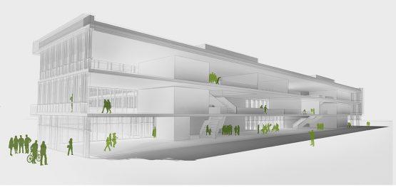 DEPARTMENT FOR PRECLINICAL MEDICINE UNIVERSITY, REGENSBURG