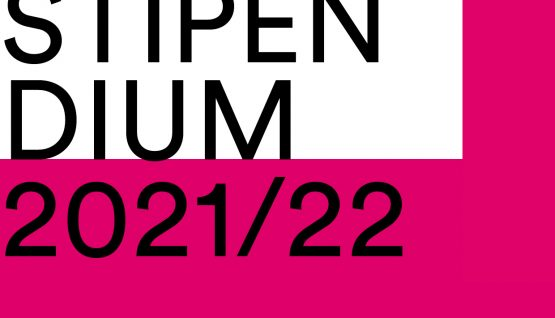 TIBES STIPENDIUM 2021/2022 Submission of application possible until April 22, 2021